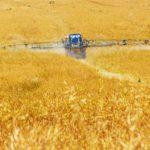 Рост объема продаж минеральных удобрений в России