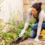 Виды удобрений — основные добавки для растений, их классификация и характеристика