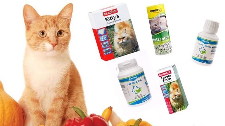 Витамины для кошек против выпадения шерсти