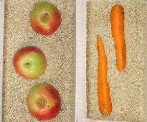hranenie-ovoschey-s-vermiculitom1
