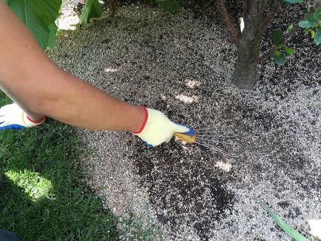 vermiculite-v-sadu