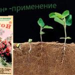 Циркон для растений — инструкция по применению препарата