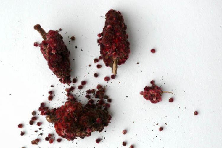 sumah-viraschivaem-doma-semenami
