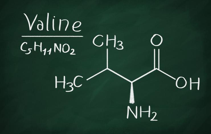 фото формулы валина