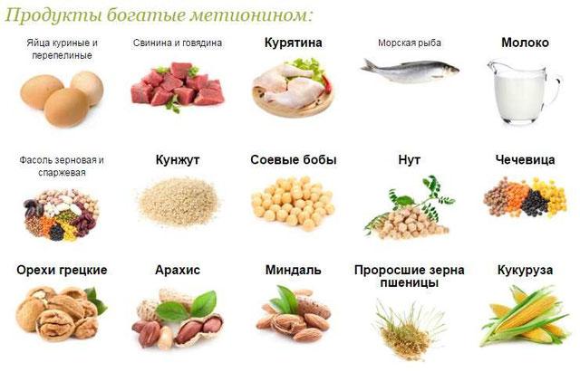 Продукты в состав которых входит метионин
