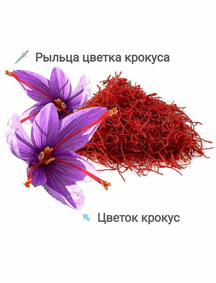 """""""шафран цветок"""""""